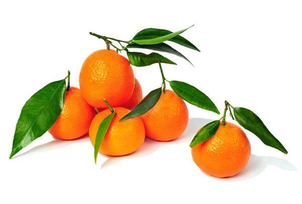 Farawayland chile mandarine